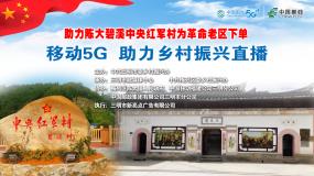 直播 助力陈大碧溪中央红军村为革命老区下单