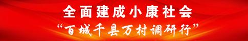 """全面建成小康社会""""百城千县万村调研行"""""""