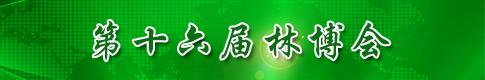 第十六届林博会